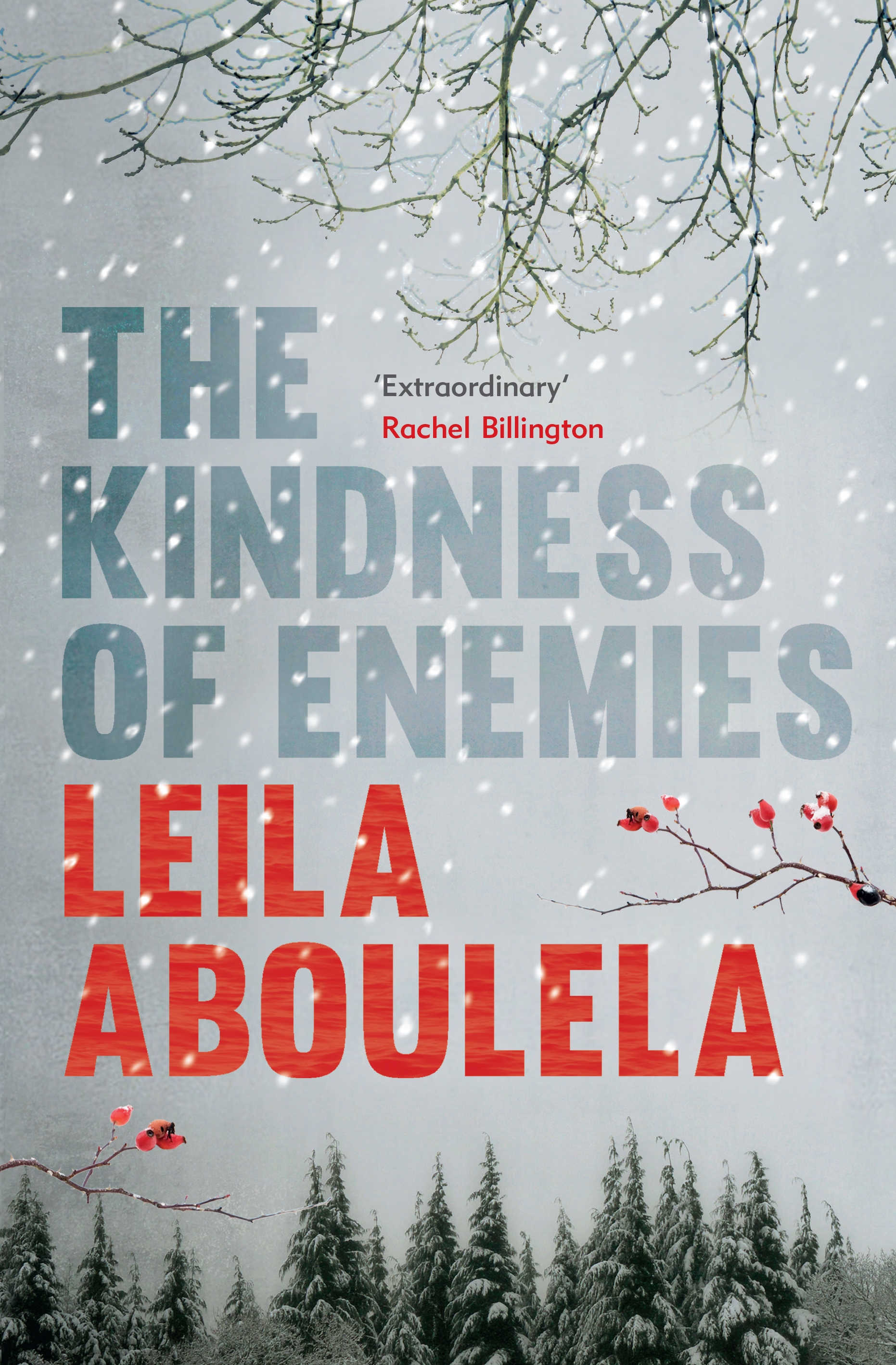 The Kindness of Enemies UK Cover